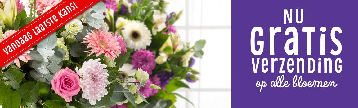 Gratis verzending bloemen - laatste kans