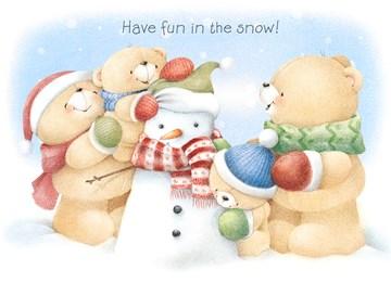 Winterkaart - beren-have-fun-in-the-snow