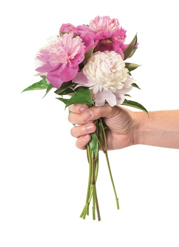 - hand-met-bos-bloemen