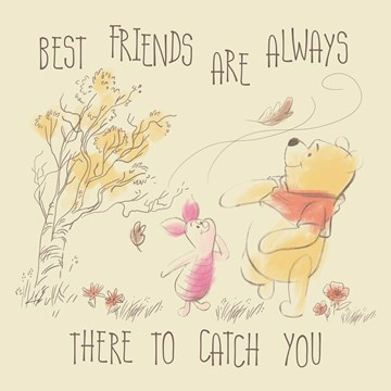 Disney kaart - disney-adult-best-friends-are-always-there-to-catch-you