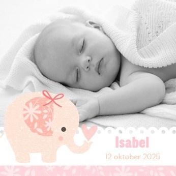 - fotokaart-met-roze-olifant