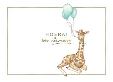 - giraf-met-ballon