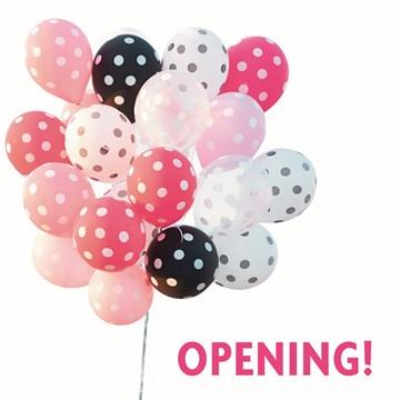 - opening-feest-ballonnen
