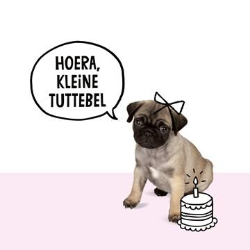 - pugs-hoera-kleine-tuttebel