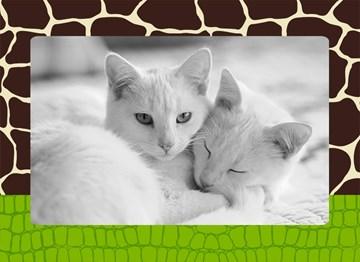 - fotokaart-foto-met-diertjes