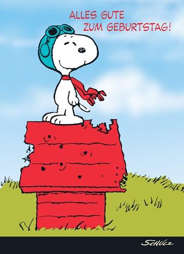 Snoopy Karte - 17490A1A-507E-4D8C-A569-260DA8201E5D