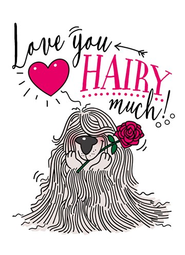 valentijnskaart - liefdeskaart-i-love-you-hairy-much