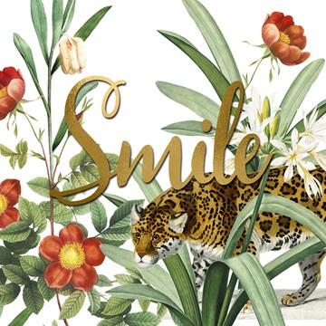 Zomaar kaart - CLA-smile-in-the-jungle