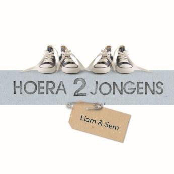Geboortekaartje - hoera-2-jongens