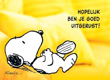 Snoopy kaart - C946E28E-85C1-4FF0-8296-8C176FA655DD