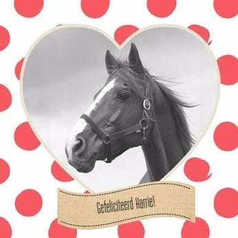 - gefeliciteerd-met-je-paard