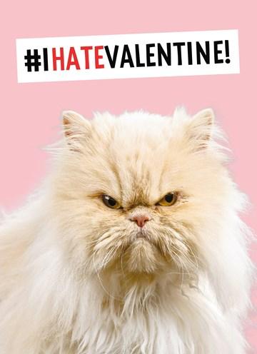 valentijnskaart - this-cat-hates-valentine