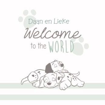 Disney kaart - disney-baby-welcome-to-the-world
