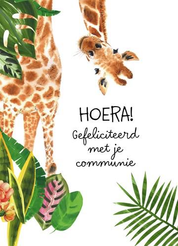 - deze-giraffe-wenst-je-een-leuke-communie