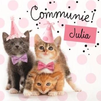 Communie kaart - zoete-katten-kaart-met-feesthoedjes-communie-kaart