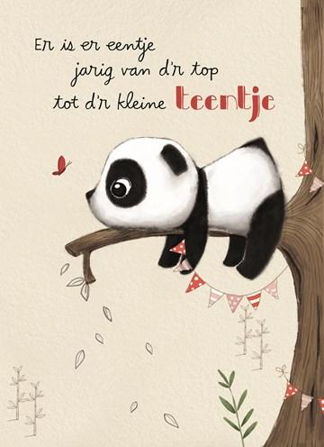 - panda-kaart-van-dr-top-tot-dr-kleine-teentje