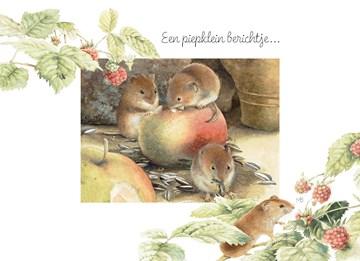 - muisje-eten-van-een-appel