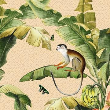 - CLA-aap-in-de-bananenboom