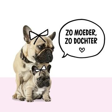 - pugs-zo-moeder-zo-dochter