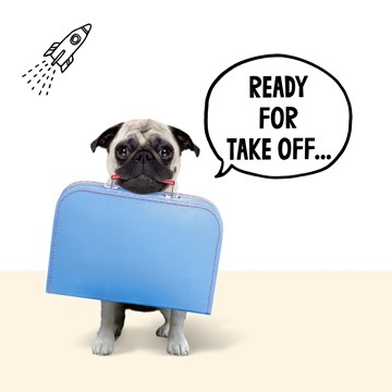 Reizen kaart - pugs-ready-for-take-off