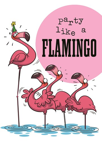 Funny Mail kaart - funny-mail-party-like-a-flamingo