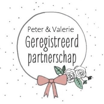 - geregistreerd-partnerschap