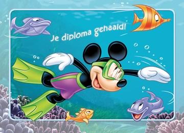 - mickey-gaat-zwemmen