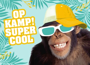 - aap-op-kamp-supercool