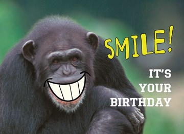 - animal-fiesta-smile-its-your-birthday