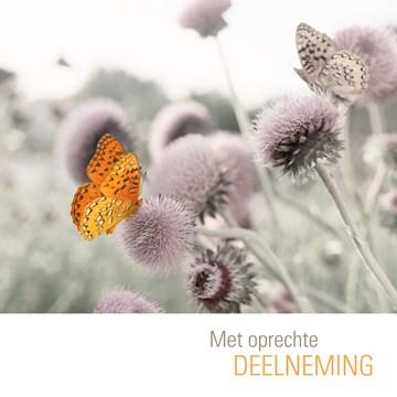 Condoleancekaart - oranje-vlinder-met-oprechte-deelneming