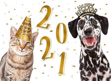 - nieuwjaarskaart-hond-en-kat-2021