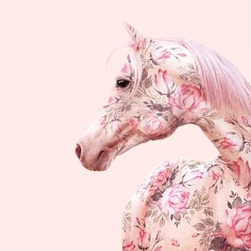 - bloemetjes-paard-paul-fuentes
