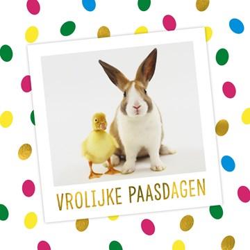 - vrolijke-paasdagen-konijn-eend