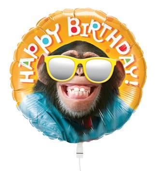 ballon-verjaardag-aap