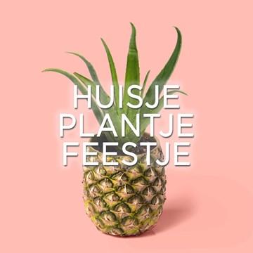 - huisje-plantje-feestje