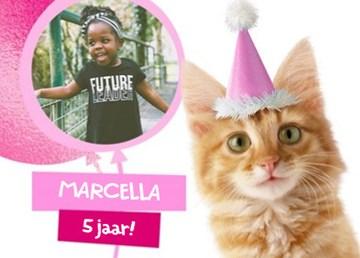 - fotkaart-met-feestlijke-kat