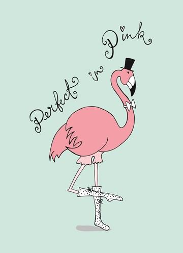 - Flamingo-met-schoenen