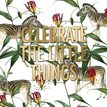 Gefeliciteerd kaart - felicitatiekaart - celebrate-the-little-things-met-deze-zebras