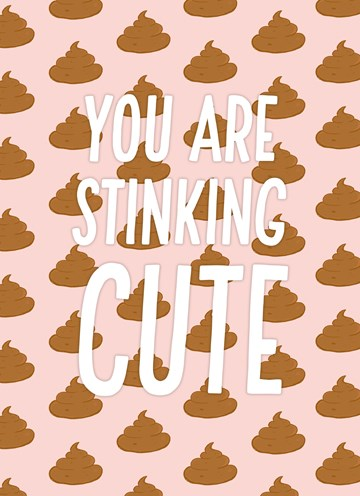 valentijnskaart - Valentijnskaart-grappig-You-are-stinking-cute