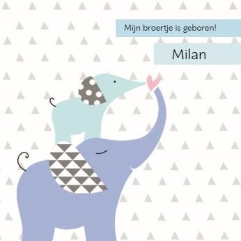 - twee-olifantjes-geboorte-jongen