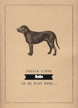 Deelnemingskaart - Rouwkaart - condoleance-huisdier-jullie-lieve-hond-is-er-niet-meer