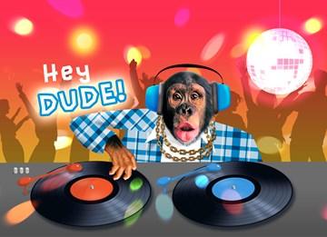 Verjaardagskaart tienerjongens - aap-achter-draaitafel