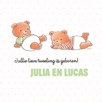 - bobbi-beer-tweeling-kaart