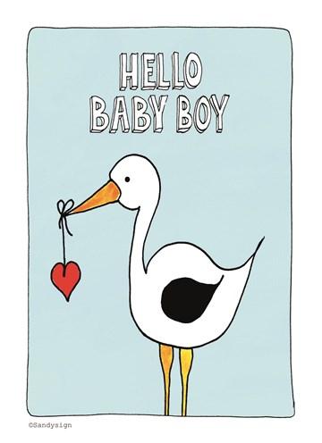 - ooievaar-hello-baby-boy-met-een-hartje-in-zijn-snavel