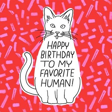 - Verjaardagskaart-van-kat-Happy-birthday-to-my-favorite-human