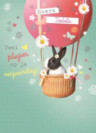 verjaardagskaart meisjes - prodo-dieren-hoera-veel-plezier-op-je-verjaardag