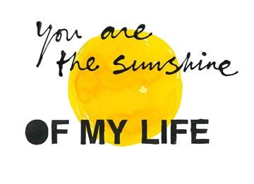 Valentijnskaart - Valentijnskaart-Ruud-de-Wild-You-are-the-sunshine-of-my-life