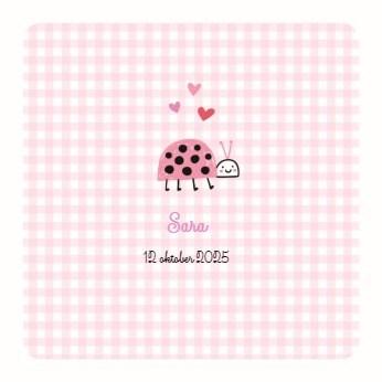 - roze-kaartje-met-kapoentje