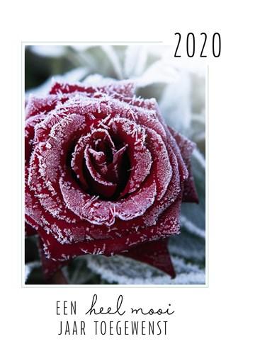 - nieuwjaarskaart-een-heel-mooi-2020-toegewenst