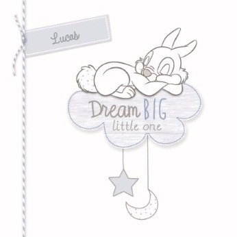 - disney-baby-dream-big-stampertje